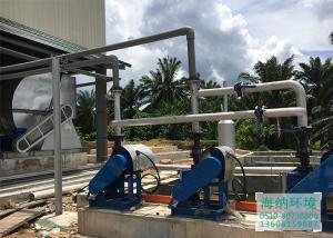 生物质(棕榈壳)锅炉除尘项目